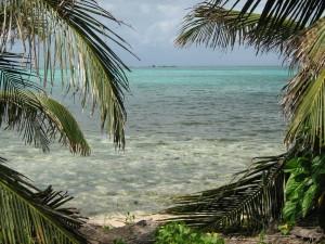 View at Half Moon Caye
