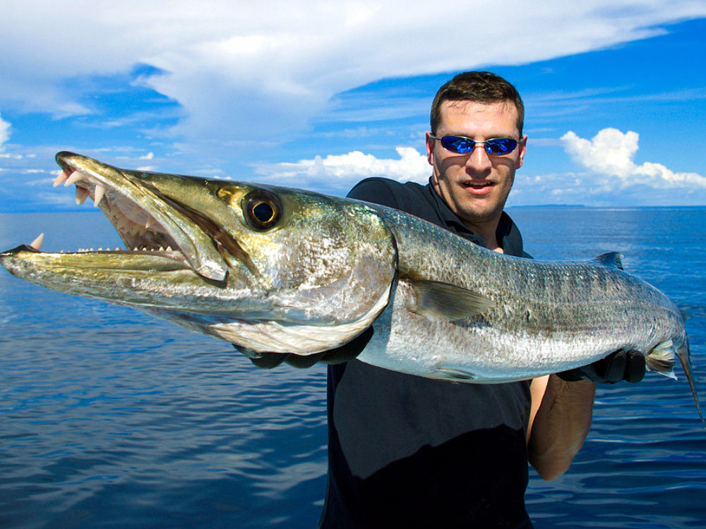 Fish Belize